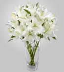 WD830 – Casa Blanca Lillies in Vase