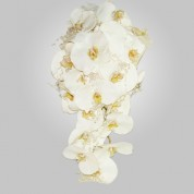 SF-500 White Phalenopsis Orchid Wedding Bouquet