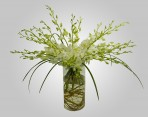 WD800 – White Dendrobium Orchids in Vase