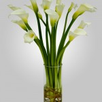 WD-810 - 15 Calla Lillies in Vase