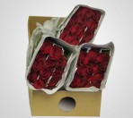 BRRed – Wholesale Red Roses